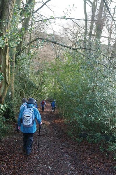 February 2014 walk